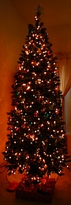 tree2008.JPG