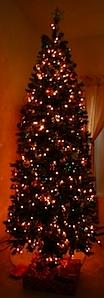 tree2008.JPG