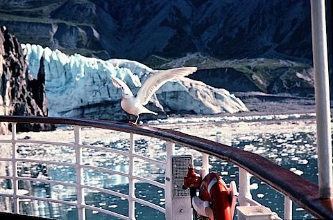 Alaska-6to8-81452712-SLD-001-0094.jpg