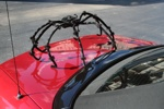 spideronmycar