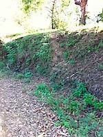 secret-path-IMG_1698.jpg